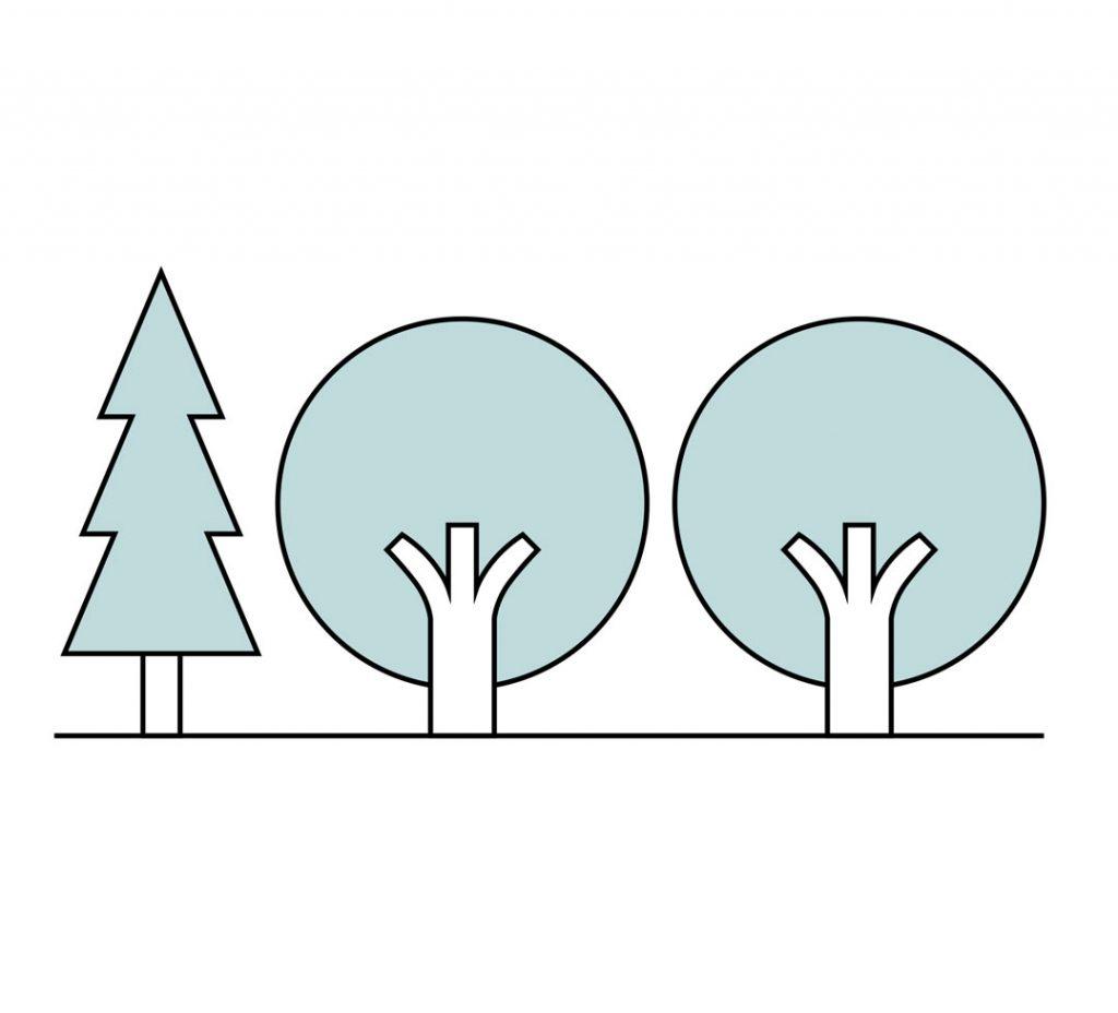 deforestation-t3